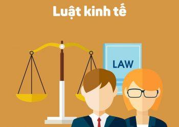 8+ Điều về Ngành Luật kinh tế cần tìm hiểu