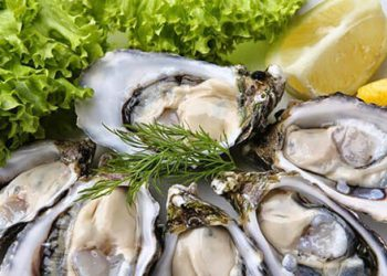 Tất cả các cách bào chế hàu ăn tốt cho tinh dịch và sức khỏe