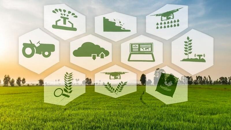 Ngành kinh doanh nông nghiệp