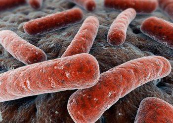 Bệnh lao xương – thứ phát của bệnh lao