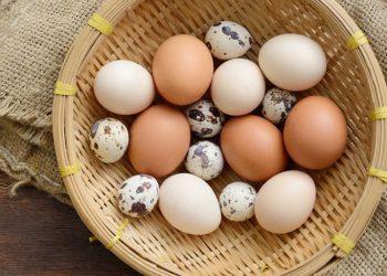 Bị trào ngược dạ dày ăn trứng là tốt hay xấu?