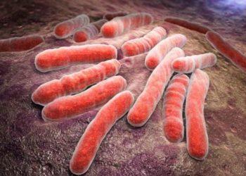 Bệnh mycobacteria không lao gây ra như thế nào? Các triệu chứng của bệnh