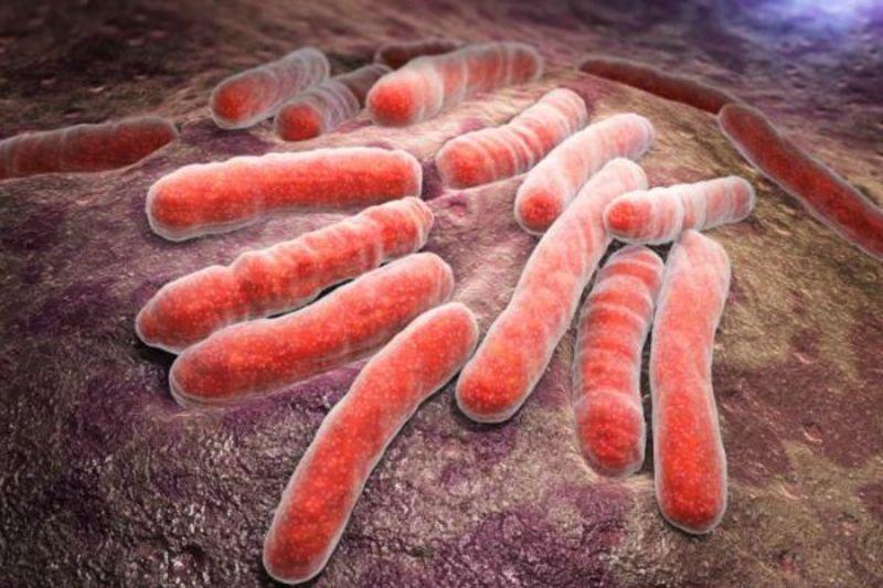 bệnh mycobacteria không lao