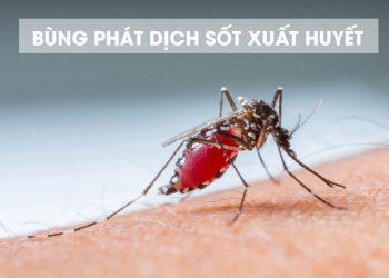 Bệnh sốt xuất huyết, cách chẩn đoán và phòng chống
