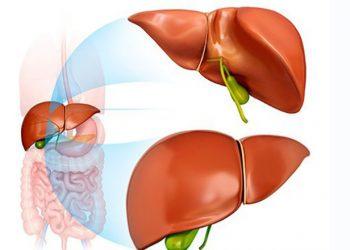 Bệnh viêm gan siêu vi loại D – Nguyên nhân, triệu chứng, cách khắc phục