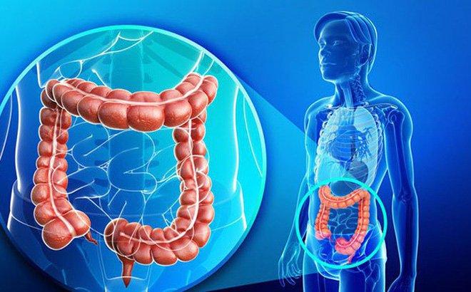 Các phương pháp điều trị hội chứng kết dính co thắt túi mật-đại tràng gan là gì?