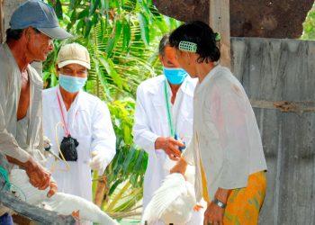 Tổng quan chung về nhiễm vi rút cúm gia cầm độc lực cao