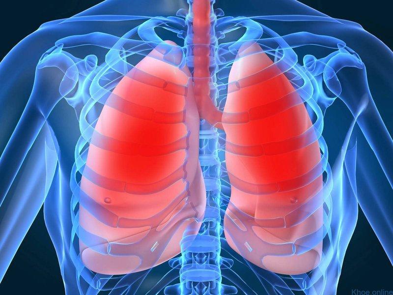 Các triệu chứng của nhiễm Acinetobacter là gì?