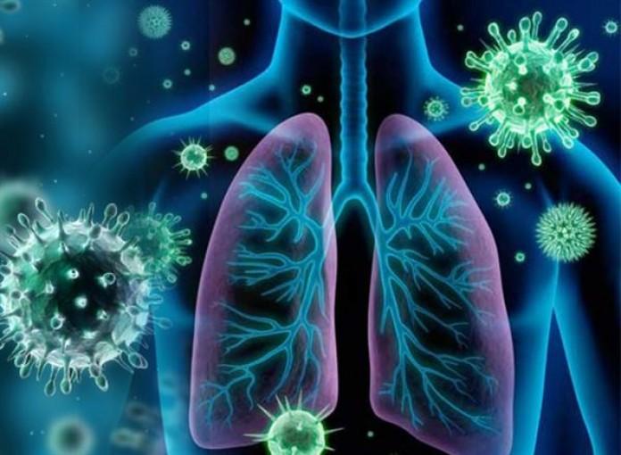 Các triệu chứng của nhiễm trùng Moraxella catarrhalis là gì?