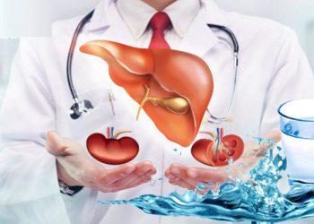 Hội chứng gan thận và những bí quyết người bệnh cần nắm vững