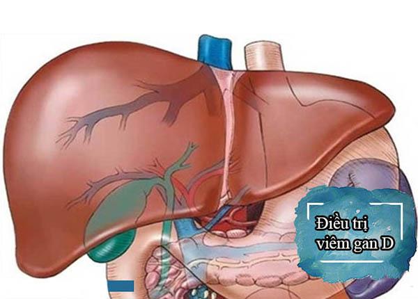 Làm thế nào để ngăn ngừa bệnh viêm gan siêu vi D?
