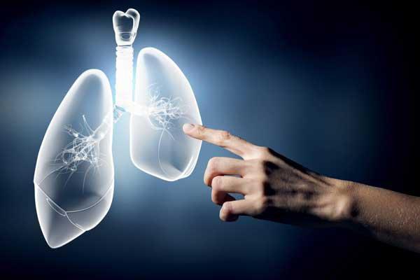 Làm thế nào để phòng ngừa bệnh amip ở phổi và màng phổi?