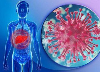 Tìm hiểu bệnh nhiễm vi rút viêm gan C và viêm cầu thận