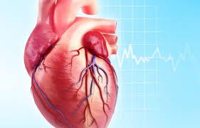 Các triệu chứng của u cơ tim nguyên phát là gì?