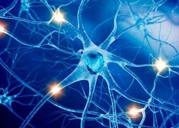 Hội chứng Paraneoplastic hệ thần kinh là gì? Cách chữa trị hiệu quả