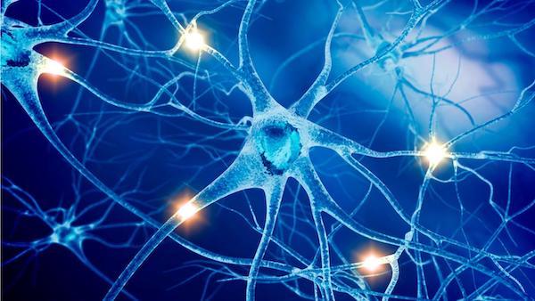 Hội chứng Paraneoplastic hệ thần kinh