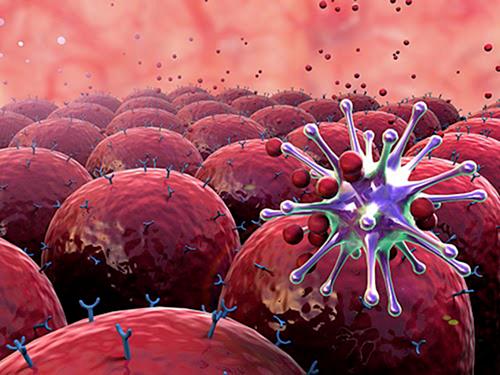 u lympho tế bào trung tâm nang da nguyên phát