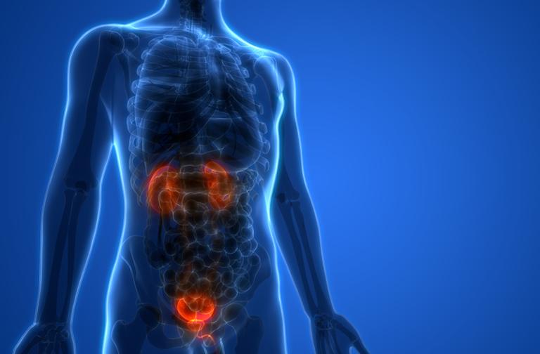 Ung thư bàng quang ở người già có thể mắc những bệnh gì?