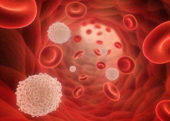 Bệnh bạch cầu cấp tính giảm tăng sinh gây ra như thế nào? Cách nhận biết và điều trị
