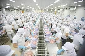 Mức lương của ngành Công nghiệp chế biến thủy sản