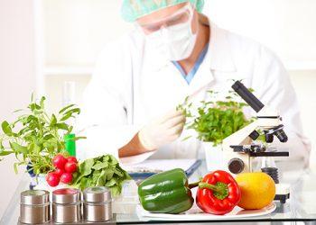 Ngành Công nghệ thực phẩm là gì? Top 5 trường đào tạo uy tín và chất lượng
