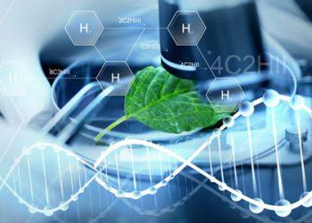 Ngành Công nghệ sinh học là gì? Top 5 trường uy tín chất lượng