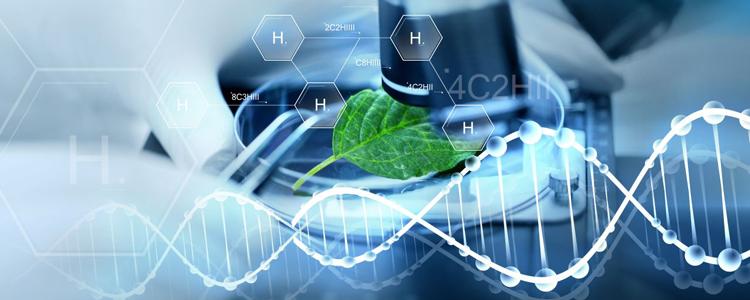 Ngành Công nghệ sinh học là gì?