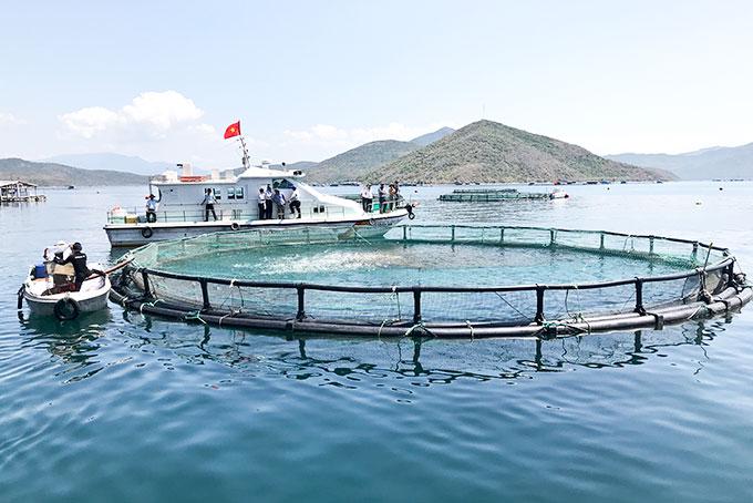 Khái quát về Ngành Nuôi trồng thủy sản