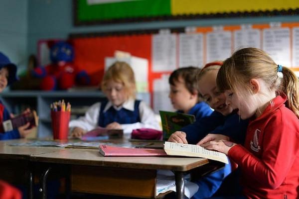 Ngành Giáo dục Mầm non là gì?