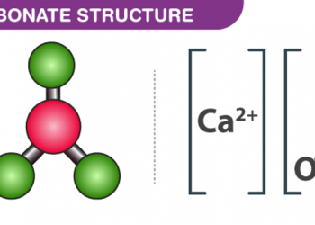 Canxi cacbonat là gì? cùng tìm hiểu về nó.