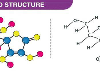 Công thức axit ascorbic là gì ? Các bạn cùng xem nhé!