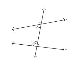 Hình học Euclid là gì? Xem xong hiểu luôn.