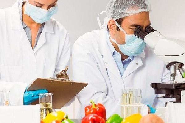 Thông tin chung của Ngành đảm bảo chất lượng và an toàn thực phẩm