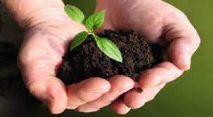 Tìm hiểu chung về ngành Khoa học đất