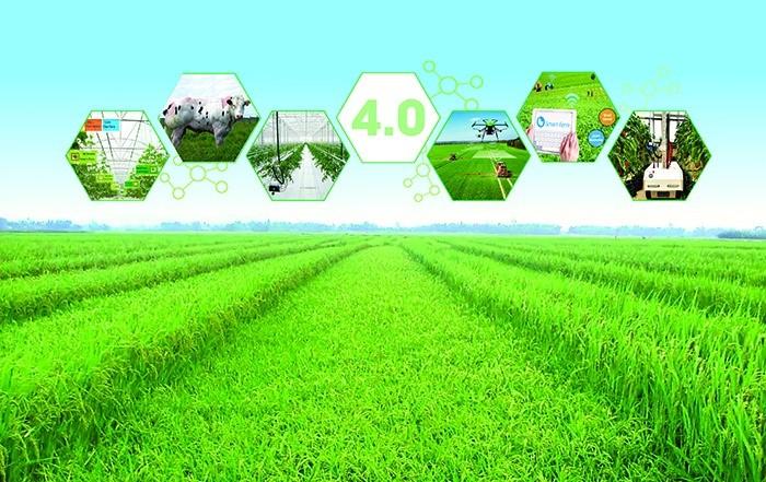 Mức lương ngành Kinh tế nông nghiệp