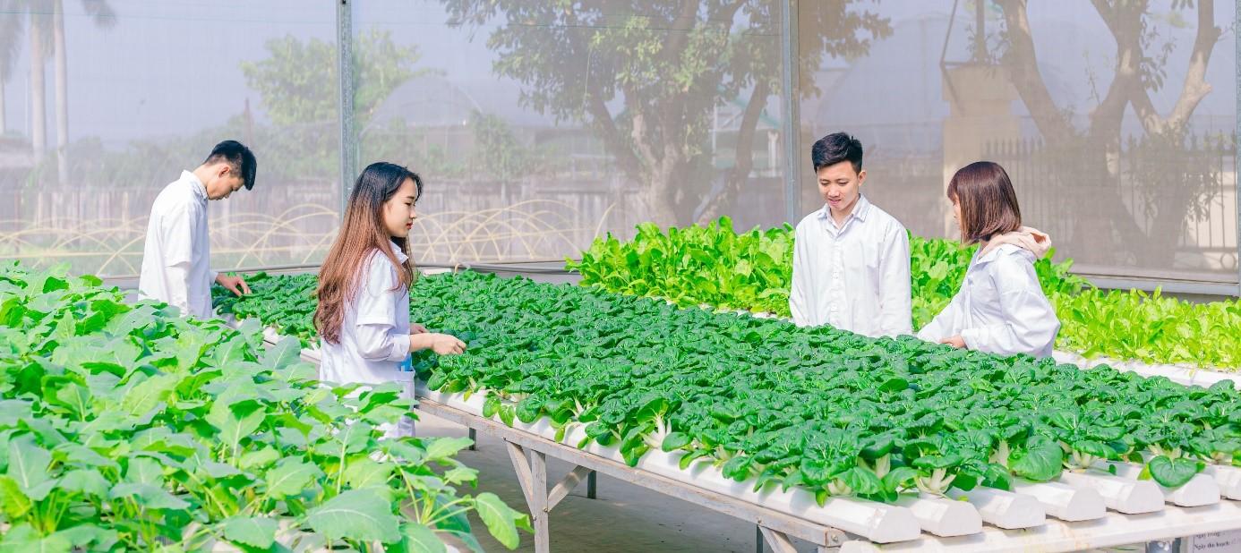 Tìm hiểu chung ngành Kinh tế nông nghiệp