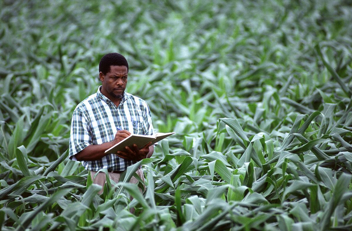 Tìm hiểuvề ngành Nông học