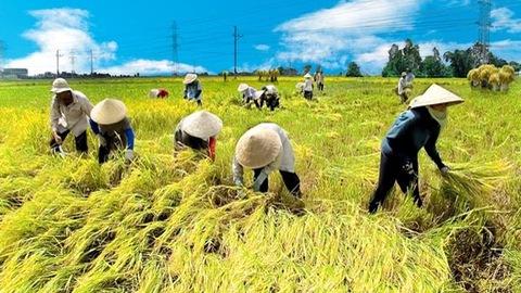 Vị trí của ngành Nông nghiệp sau khi ra trường