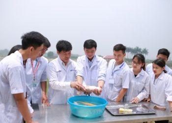Ngành Quản lý thủy sản là học gì với danh sách 4 trường đào tạo uy tín nhất