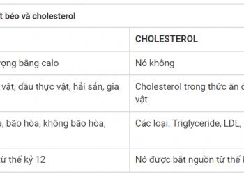 Sự khác biệt giữa chất béo và cholesterol xem hiểu trong 5 phút