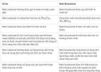 Sự khác biệt giữa Natri cacbonat và Natri Bicacbonat xem qua 5 phút hiểu luôn