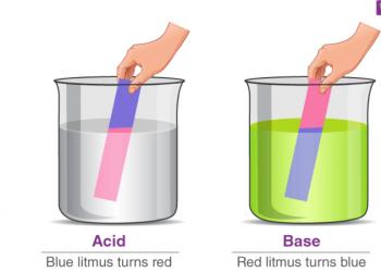 Axit và bazơ là gì? Nội dung chi tiết trong bài này