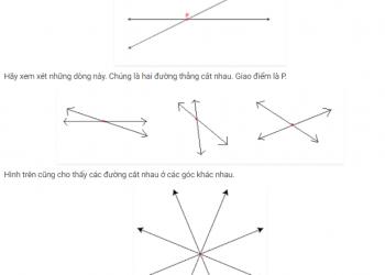 Các đường giao nhau và các đường không giao nhau là gì? xem xong 5 phút hiểu luôn