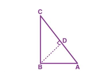 Định lý Toán học là gì? Xem xong 5 phút hiểu luôn.
