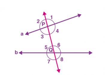 Mối quan hệ đường thẳng và góc song song là gì? Xem xong 5 phút hiểu luôn.