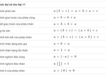 Phương trình tuyến tính trong một bảng tính biến là gì? Xem xong 5 phút hiểu luôn.