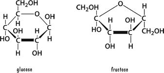 Sự khác biệt giữa Glucose và Fructose chuẩn nhất