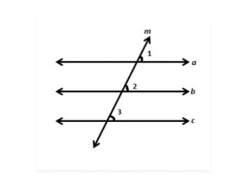 Thuộc tính của đường song song là gì? Xem xong 5 phút hiểu luôn.