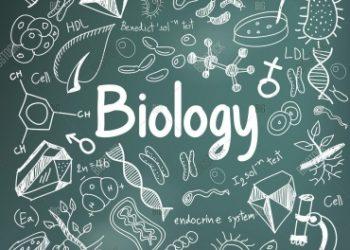 Ngành Sư phạm sinh học là gì? Top 15 trường chuyên đào tạo uy tín