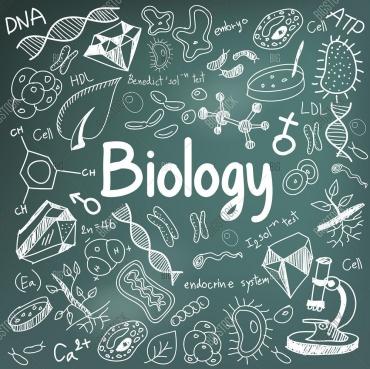 Mức lương mới nhất của ngành Sư phạm sinh học